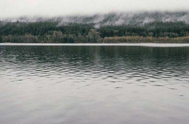 Deixe de ser um copo. Torne-se um lago.
