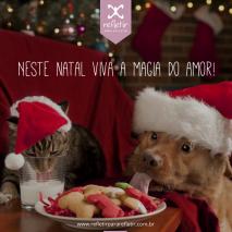Contos de Natal, uma ceia inesperada