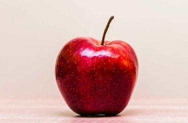 Parábola: O fruto