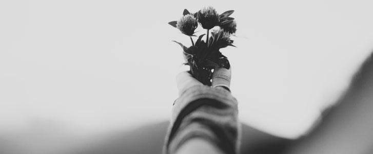Frases de perdão