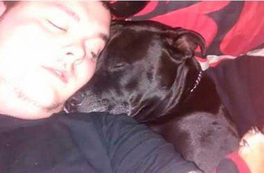 Este homem decidiu tirar sua própria vida – o que ele viu na boca do seu cachorro mudou tudo