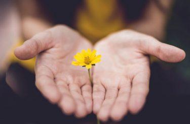 7 coisas sobre a vida que se você souber e entender te farão uma pessoa melhor
