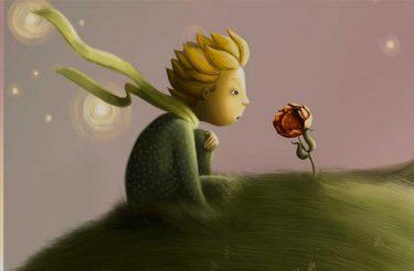 16 frases do Pequeno Príncipe que devem ser lidas TODOS OS DIAS <3