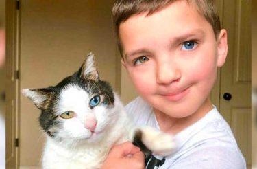 Gato ajuda menino que sofre bullying por sua aparência a se aceitar