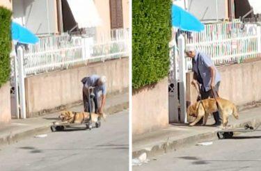 Vídeo tocante de um homem e seu cão derrete os corações de todo o mundo