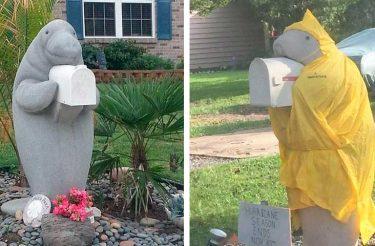 """""""Meu vizinho tem essa caixa de correio de peixe-boi e ele a veste durante todo o ano e eu sou meio obcecado com isso"""""""