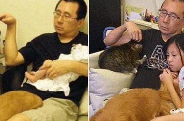 Pai refaz foto com filha, gato e cachorro 10 anos depois