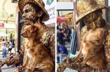 Cachorrinha ajuda seu amigo humano, um artista de rua em sua rotina de estátua humana