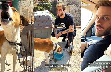 Defensor da causa animal faz resgate de cachorro acorrentado em laje [Vídeo]