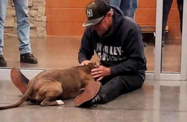 Homem derrama lágrimas de alegria quando reencontra seu cachorro que estava desaparecido há 6 meses